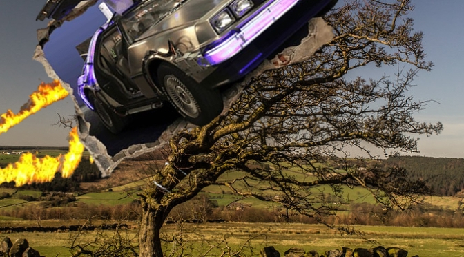 Faerie Tree vs DeLorean